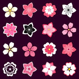 Set of cherry blossom, flowers icons Royalty Free Stock Images