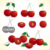 Set of cherry in various styles  format Stock Image