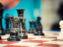 Set of chess figures on the playing board Stock Photography