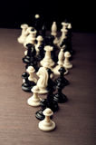 Set of chess pieces Royalty Free Stock Image
