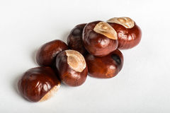 Set of chestnuts on white Stock Photos