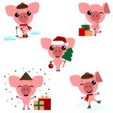 Set chiński symbol 2019 rok świnia z różnymi emocjami royalty ilustracja