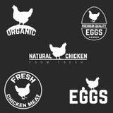 Set chicken and eggs logo emblem. Natural fresh farm Stock Photography