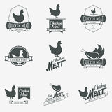 Set of chicken meat logo, symbol or label design Royalty Free Stock Photography