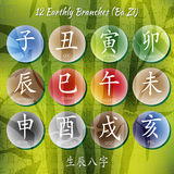 Set of chinese feng shui hieroglyphs. Stock Photos