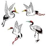 Set of chinese heron Stock Photo