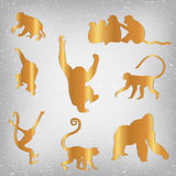 Set of Chinese Zodiac - Monkeys. Vector illustration. 2016 New Year Symbol. Red Monkey Silhouette Stock Images