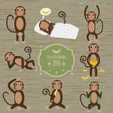 Set of Chinese Zodiac - Monkeys. Vector illustration. 2016 New Year Symbol. Sitting Monkey, Dancing Monkey with Vntage Badges Royalty Free Stock Images