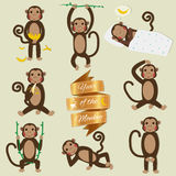 Set of Chinese Zodiac - Monkeys. Vector illustration. 2016 New Year Symbol. Sitting Monkey, Dancing Monkey with Vntage Badges Royalty Free Stock Photos