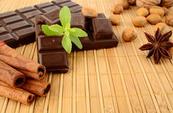 Set of chocolate,anise and cinnamon with sage on wooden mat Stock Photography