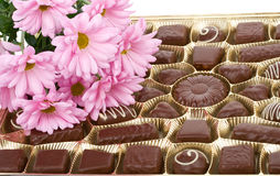 Set of chocolate and chrysanthemum flowers Stock Images