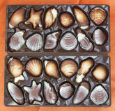 Set of chocolate sweets. Top view of square box with chocolates in forms of seashells Royalty Free Stock Photos
