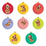 Set of christmas ball. Funny Cartoon Puppy in the hat of Santa in Different Poses. New Year Puppy. Royalty Free Stock Photography