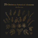 Set of 25 Christmas botanical symbols. Thin line vector icons. Xmas outline illustrations. n Royalty Free Stock Photography
