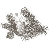Set of Christmas decoration with pinecone, pine branch and candle. Royalty Free Stock Photo