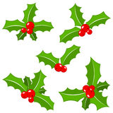 Set of christmas holly leaves Royalty Free Stock Photos