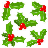 Set of christmas holly leaves Stock Images