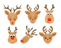 Set of Christmas reindeer Stock Photography