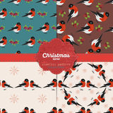 Set of  christmas seamless patterns for xmas cards and gift wrapping paper Stock Photos