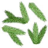 Set of Christmas tree branch for decorate. Over white background Royalty Free Stock Photos