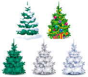 Set of Christmas trees Royalty Free Stock Image