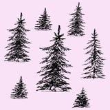 Set of Christmas trees, pine trees. Doodle style, sketch illustration stock illustration