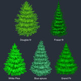 Set of christmas vector tree like fir or pine Blue spruce for New year celebration without holiday decoration, evergreen Stock Image