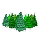 Set of christmas vector tree like fir or pine Blue spruce for New year celebration without holiday decoration, evergreen Royalty Free Stock Image
