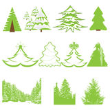 Set of Christmas winter pine tree Royalty Free Stock Image