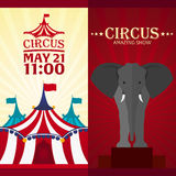 Set Circus banner, circus ticket. Amazing Show. Flat illustration. Royalty Free Stock Photography
