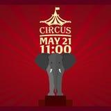 Set Circus banner, circus ticket. Amazing Show. Flat illustration. Royalty Free Stock Photos
