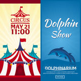 Set of Circus and dolphin show banner, circus and dolphinarium ticket. Amazing Show. Flat illustration. Set of Circus and dolphin show banner, circus and Royalty Free Stock Photo