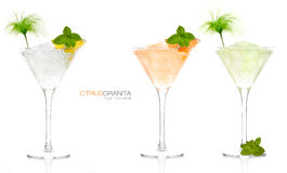 Set of Citrus Fruit Granitas in Cocktail Glasses stock photos
