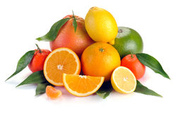 Set of citrus fruit with leaves Stock Images