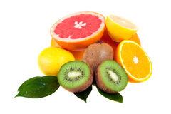Set of citrus fruits Royalty Free Stock Images