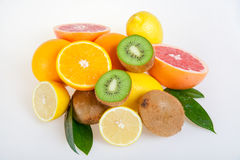 Set of citrus fruits Royalty Free Stock Photo