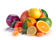 Set of citrus  fruits Royalty Free Stock Photos