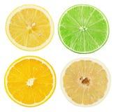 Set of citrus isolated on the white background Stock Photo