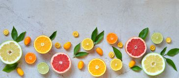 Set of citrus on light background: orange, mandarin, lemon, grapefruit, lime, kumquat, tangerine. Fresh organic juicy fruits. Sour Royalty Free Stock Photography