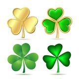 Set of  clovers isolated on white. Stock Photos
