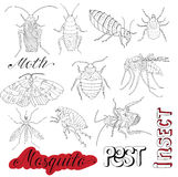 Set with cockroaches and pests Stock Images