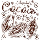 Set of cocoa in loose hands with letting, cocoa and chocolate, cocoa bean, leaves, hand-drawn, white background, retro style,. Set of cocoa in loose hands with Royalty Free Stock Images