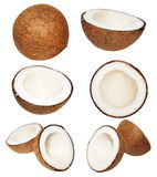 Set coconut isolated on white background,  with clipping path Stock Image