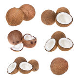 Set with coconuts Stock Images