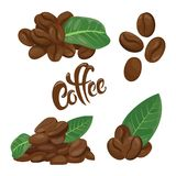 A set of coffee beans. A collection of coffee beans in different variations. Logo for the coffee house. Vector. Set of coffee beans. A collection of coffee beans Stock Illustration