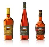 Set of cognac bottles Royalty Free Stock Photos