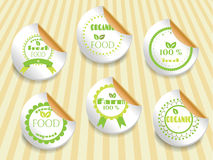 Set, collection of beautiful, green, natural. Group of six labels on bright background Stock Photos