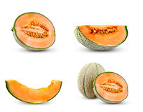 Set Collection of Cantaloupe Melon.  Isolated on white background. Stock Image