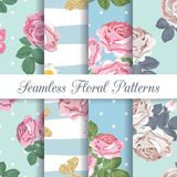 Set collection of floral seamless patterns with roses and butterflies royalty free illustration
