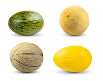 Set Collection of Melon. Cantaloupe, Galia,  Piel de sapo and Honeydew. Isolated on white background. Royalty Free Stock Photos